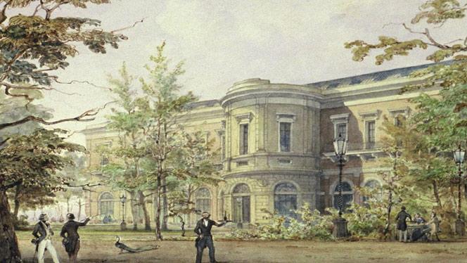 oude-prent-van-het-artis-grootmuseum